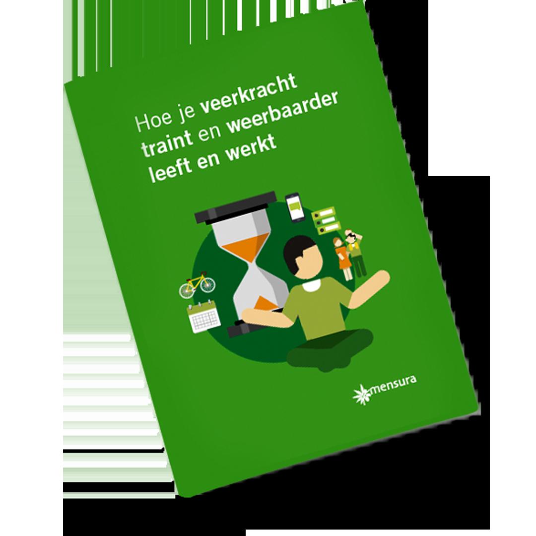 E-book Veerkracht